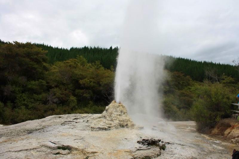 Okolí města Rotorua – geotermální aktivity