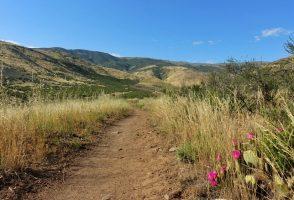 32. den na PCT – 2 195 mil do Kanady