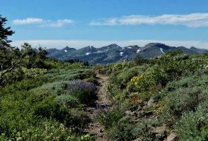 84. den na PCT – 1 535 mil do Kanady