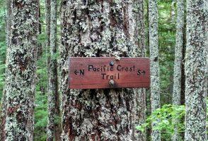 149. den na PCT – 118 mil do Kanady